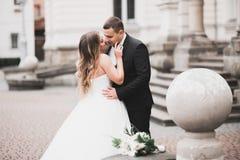 Älskvärda lyckliga brölloppar, brud med den långa vita klänningen royaltyfri bild