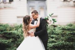 Älskvärda lyckliga brölloppar, brud med den långa vita klänningen fotografering för bildbyråer