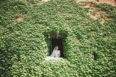 Älskvärda lyckliga brölloppar, brud med den långa vita klänningen som poserar i härlig stad arkivbild