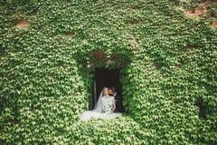 Älskvärda lyckliga brölloppar, brud med den långa vita klänningen som poserar i härlig stad arkivbilder