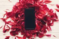 Älskvärda röda pionkronblad samlar ihop och ringer med den tomma skärmen på r royaltyfri foto