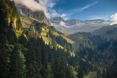 Älskvärt alpint landskap med den härliga skogen arkivbilder