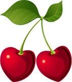 älskvärt Cherry Arkivfoton