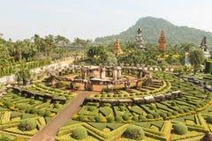 Älskvärt stag, blommaträdgård, Thailand Fotografering för Bildbyråer