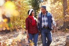 Ältere Afroamerikaner-Paare, die durch Fall-Waldland gehen Lizenzfreies Stockbild