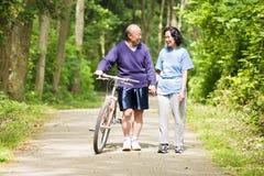 Ältere asiatische Paare Lizenzfreie Stockbilder