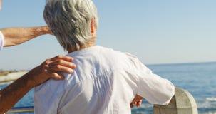 Ältere aufeinander einwirkende Paare bei der Stellung der nahen Seeseite 4k stock video footage
