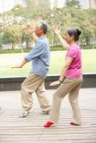 Ältere chinesische Paare, die Tai-Chi im Park tun Stockfotografie