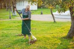 Ältere Dame, die mit Rührstange arbeitet Stockfotografie