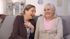 Ältere Damen, die heraus lautes, die lustigen Geschichten erzählend lachen, die zu Hause auf Couch sitzen stock video footage