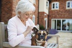 Ältere Frau, die auf Bank mit Haustier-französischer Bulldogge in der Anlage des betreuten Wohnens sitzt stockbild