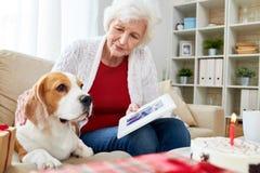 Ältere Frau, die dem Hund Foto zeigt lizenzfreie stockfotografie