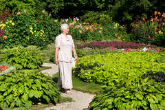 Ältere Frau, die in den Park geht Stockfoto