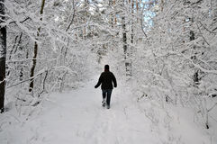 Ältere Frau, die durch den Schnee pflügt stockbilder