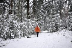 Ältere Frau, die in einen schneebedeckten Wald geht stockfotografie