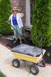 Ältere Frau, die im mit Laub bedeckenden Garten arbeitet Stockfotos