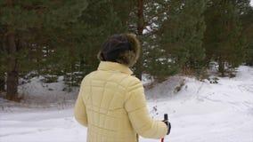 Ältere Frau, die in nordischen Weg des Winterwaldwinters im schneebedeckten Wald geht stock video footage