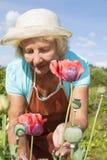 Ältere Frau, die um Blumen im Garten sich entspannt und sich kümmert Stockfoto