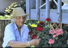 Ältere Frau in einem Garten lizenzfreies stockbild