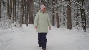 Ältere Frau geht auf den geschlagenen Weg in einem schönen schneebedeckten Park und in einem Blick herum Pensionär genießt Winter stock footage