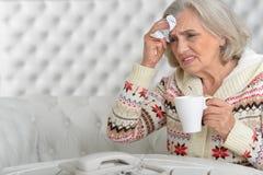 Ältere Frau hat Grippe stockfoto