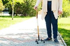 Ältere Frau im Park am sonnigen Tag stockbild