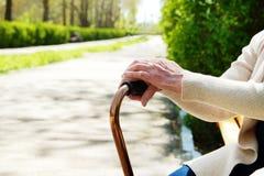 Ältere Frau im Park am sonnigen Tag stockfotos