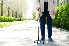 Ältere Frau im Park am sonnigen Tag lizenzfreie stockbilder