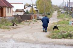 Ältere Frau mit einem Hund in der Landschaft lizenzfreies stockbild