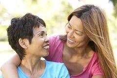 Ältere Frau mit erwachsener Tochter im Park lizenzfreies stockfoto