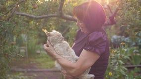 Ältere Frau mit Katze stock video