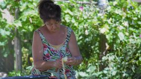 Ältere Frau nimmt einen Apfel von einer Eisenschüssel und säubert ihn mit einem Schalenmesser stock video