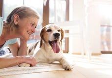 Ältere Frau und Hund Stockbild