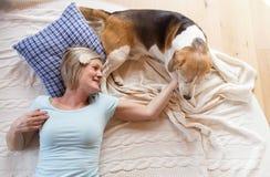 Ältere Frau und Hund Stockfotos
