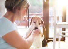 Ältere Frau und Hund Lizenzfreie Stockbilder