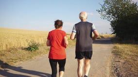 Ältere Frau und Mann, die auf einem Feld läuft oder rüttelt stock video footage