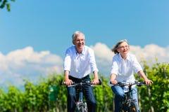 Ältere Frau und Mann, die Picknick auf Wiese hat Stockfotografie