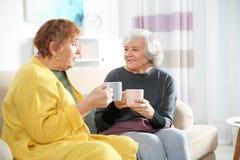 Ältere Frauen, die zusammen Tee trinken stockfotografie