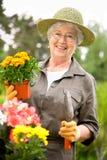 Ältere Frauengartenarbeit Stockfotografie