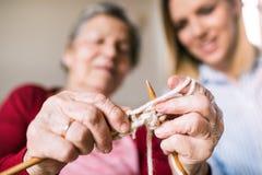 Ältere Großmutter- und Erwachsenenkelin zu Hause, strickend lizenzfreie stockbilder