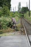 Ältere kaukasische Mannzutatbrombeersträucher durch ein Bahngleis stockfotografie