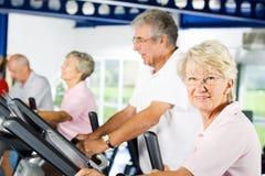 Ältere Leute, die in der Gymnastik trainieren lizenzfreie stockfotografie