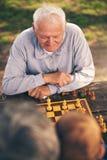 Ältere Männer, die Spaß haben und Schach am Park spielen Stockfotografie