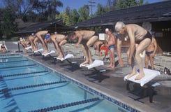 Ältere olympische Schwimmenkonkurrenz Stockbilder