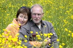 Ältere Paare auf einem Butterblumegebiet Stockfoto
