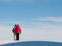 Ältere Paare auf Hügel lizenzfreie stockbilder