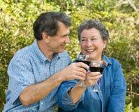 Ältere Paare bilden einen Toast Lizenzfreie Stockbilder