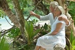 Ältere Paare, die auf Holzbank sitzen Lizenzfreie Stockfotografie