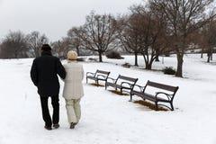 Ältere Paare, die in den Park gehen lizenzfreie stockfotos