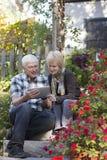 Ältere Paare, die digitale Tablette betrachten lizenzfreies stockfoto
